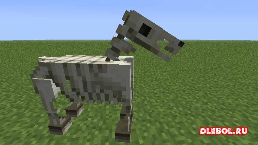 Лошадь скелет